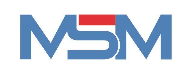 Tổng quan về MSM Group